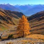 Покоряем лыжную станцию осенью